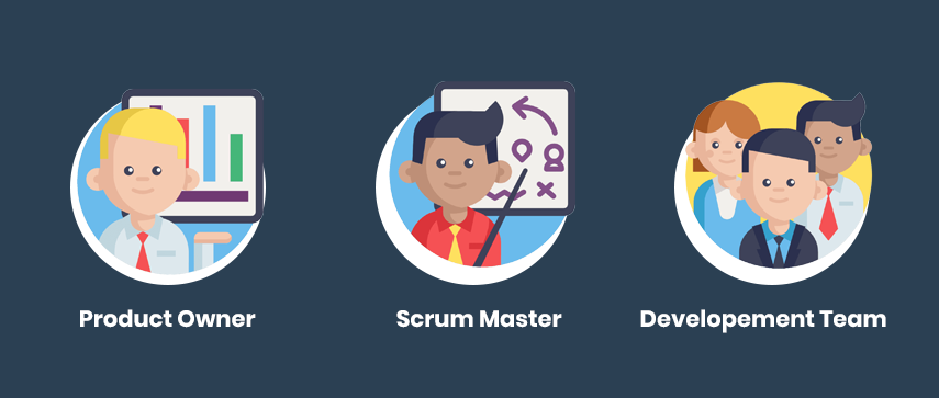 roles in scrum