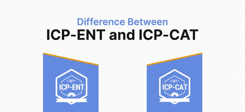 What is the focus of ICP-ENT and ICP-CAT Programs?